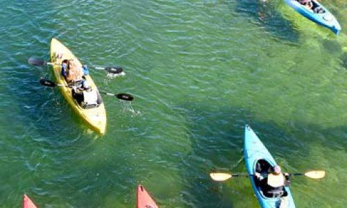 columbia-river-paddle-kayakers